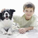 Дети в мире домашних животных.